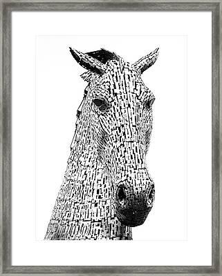 Grand. Framed Print by Angela Aird