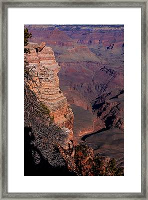 Framed Print featuring the photograph Grand Canyon 11 by Donna Corless