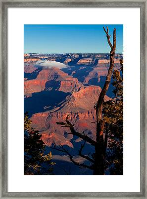 Framed Print featuring the photograph Grand Canyon 30 by Donna Corless