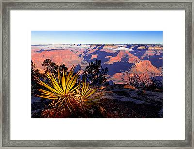 Framed Print featuring the photograph Grand Canyon 31 by Donna Corless