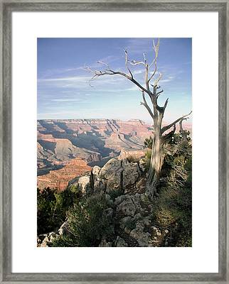 Framed Print featuring the photograph Grand Canyon 5 by John Norman Stewart