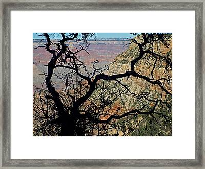 Grand Canyon 8 Framed Print