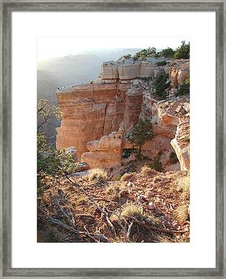 Framed Print featuring the photograph Grand Canyon Bluff by Nancy Taylor