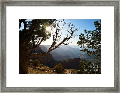 Grand Canyon Light Framed Print