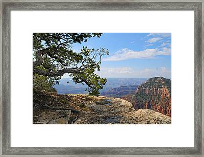 Grand Canyon North Rim Craggy Cliffs Framed Print