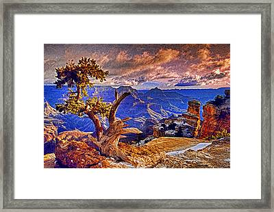 Grand Canyon Pine Framed Print by Dennis Cox WorldViews