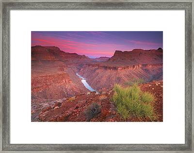 Grand Canyon Sunrise Framed Print by David Kiene