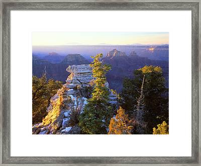 Grand Canyon Sunrise Framed Print by Johan Elzenga