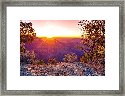 Grand Canyon Sunrise Framed Print by Scott McGuire