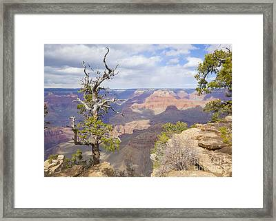 Framed Print featuring the photograph Grand Canyon View by Chris Dutton