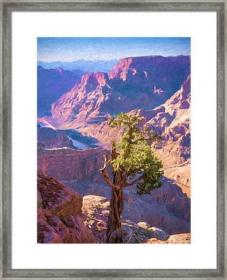Grand Canyon West Framed Print