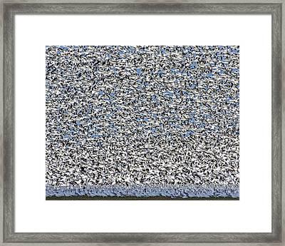 Grand Central Framed Print