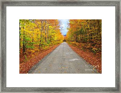 Grand Finale Framed Print by Catherine Reusch Daley