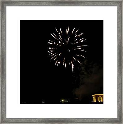 Grand Illumination 2015 31 Framed Print by Teresa Mucha