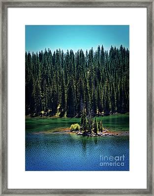 Grand Mesa Emerald Isle Framed Print by Janice Rae Pariza