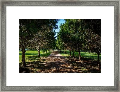 Grand Pathway - The Hermitage Framed Print
