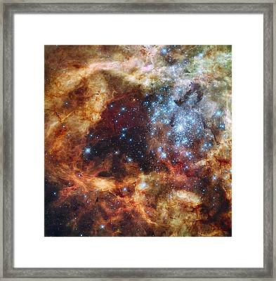 Grand Star Forming - A  Stellar Nursery Framed Print by Mark Kiver