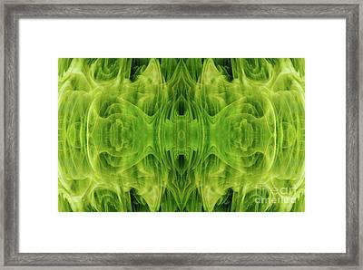 Grand Symphony Framed Print by Tlynn Brentnall