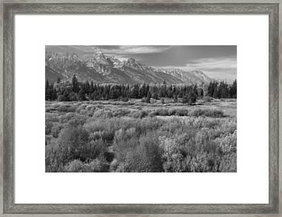 Grand Teton Afternoon Framed Print