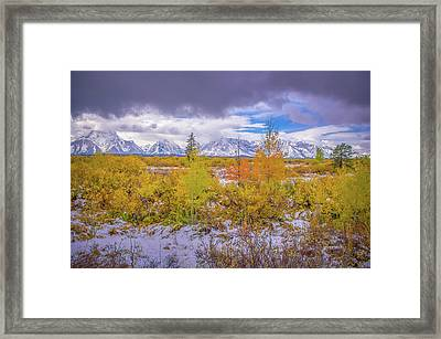 Grand Teton Fall Snowfall Framed Print