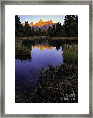 Grand Teton Morning Framed Print