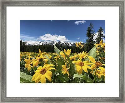 Grand Teton Mountains Framed Print