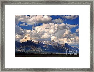 Grand Teton National Park Framed Print by Diane E Berry