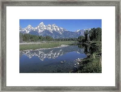 Grand Teton Reflection At Schwabacher Landing Framed Print by Sandra Bronstein