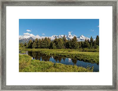 Grand Teton Reflection Framed Print by Brian Harig