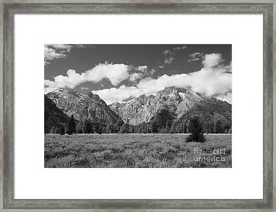Grand Tetons In Black And White Framed Print