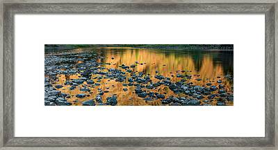 Grande Ronde Gold Framed Print by Leland D Howard