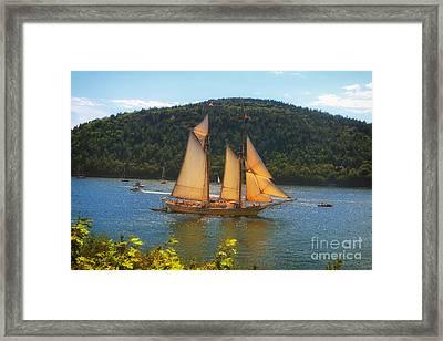 Grandiose  Framed Print by Elizabeth Dow