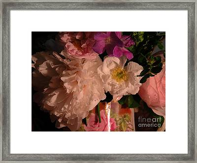Grandma's Bloomers Framed Print by Donna Stewart