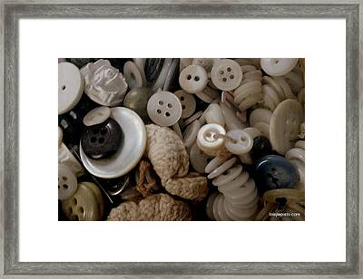 Grandma's Buttons Framed Print by Lois Lepisto