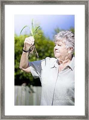 Grandmother In Her Garden Framed Print by Jorgo Photography - Wall Art Gallery