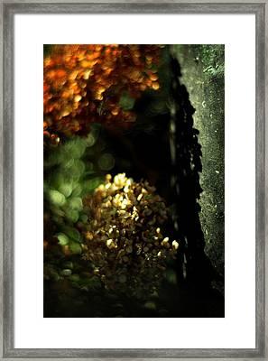 Grandmother's Jewels Framed Print by Rebecca Sherman
