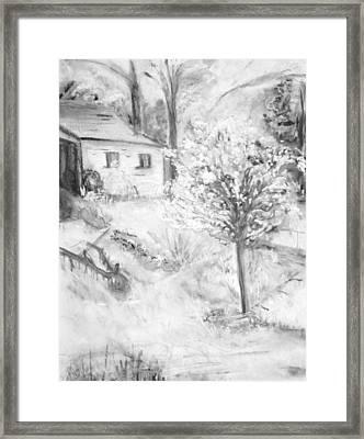 Grandpa's Backyard Iv Framed Print by Helena Bebirian