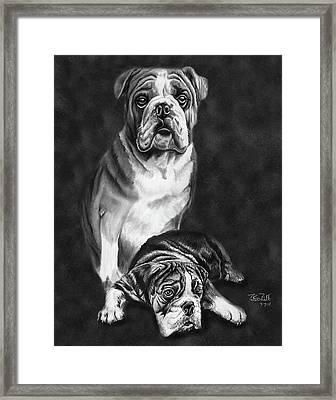 Grandson Of Sampson Framed Print by Peter Piatt