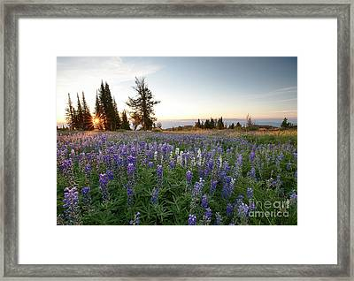 Granite Mountains Sunrise Framed Print