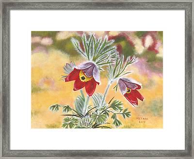 Granny Flowers Framed Print