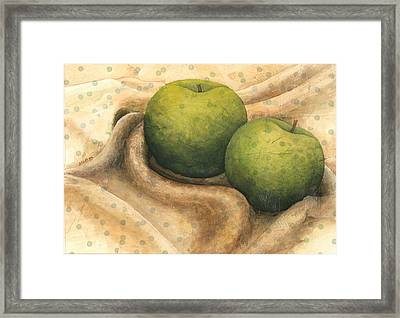 Granny Smith Apples Framed Print by Sandy Clift