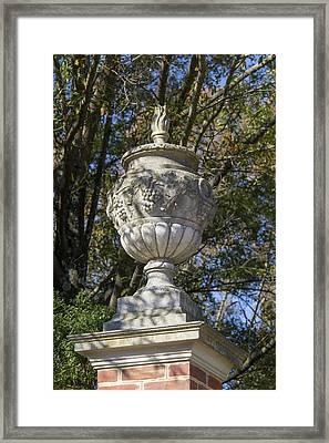 Grape Flame Garden Urn Framed Print by Teresa Mucha