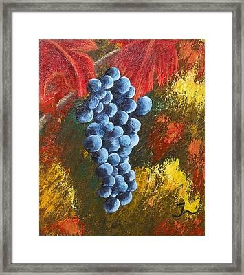 Grape Harvest Framed Print by Christina Burke-Gagnon