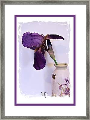 Grape Iris In A Vase Framed Print