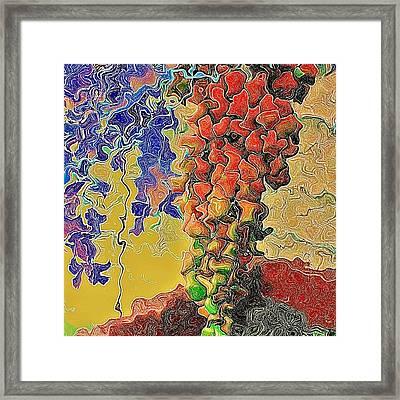 Grape Framed Print