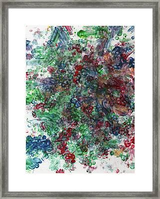 Grape Vine Framed Print by Antony Galbraith