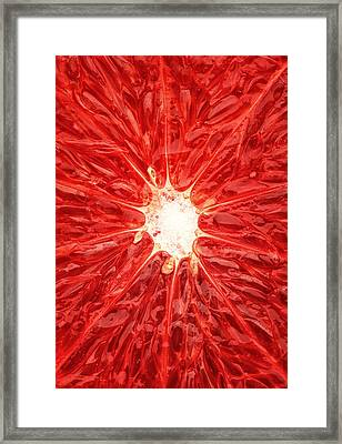 Grapefruit Close-up Framed Print by Johan Swanepoel