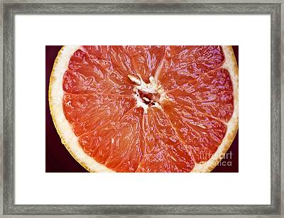 Grapefruit Half Framed Print by Ray Laskowitz - Printscapes