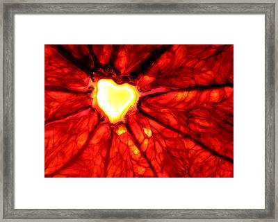 Grapefruit Heart Framed Print