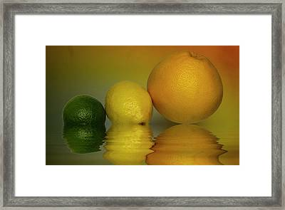 Framed Print featuring the photograph Grapefruit Lemon And Lime Citrus Fruit by David French